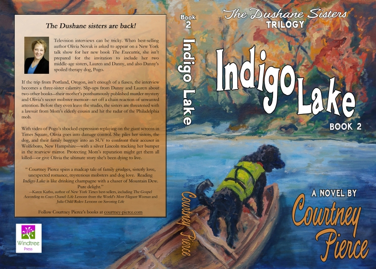Indigo Lake Print Cover